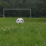 Guardian piece on school playing fields