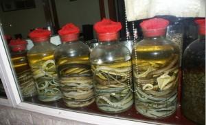 Snake Alcohol