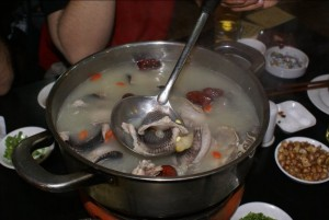 Snake and turtle hotpot